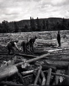 Log drive in the early years. In the mid 1920's the AND Co switched to short (5 feet 2 inch) wood which was much easier to handle and drive.