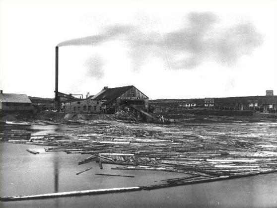 Botwood Mill Exploit Lumber Company