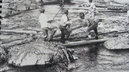 Log drivers freeing a log jam on the Exploits River 1910-1919. (Photo from the Grand Falls Windsor Heritage Society)