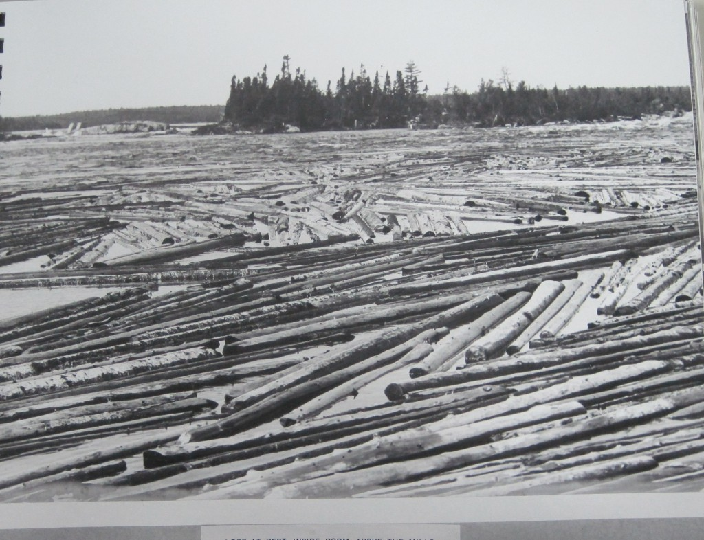 Wood in the mill pond at Grand Falls,