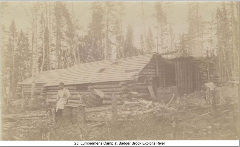 Logging Camp at Badger.  Judging from the age of the ther photos in the this collection this would have been a camp cutting for the Exploits Lumber Company in Botwood Circa 1890's. The cook might even be a Frenchmen!
