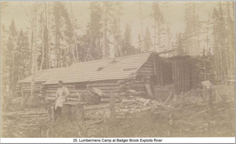 Lumbermans camp badger brok