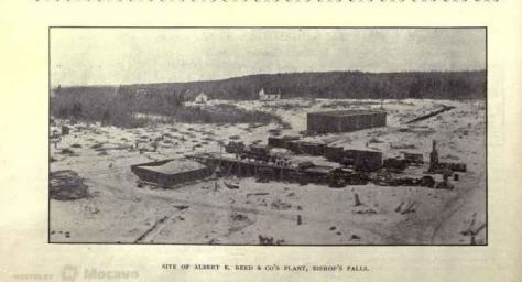 Harry Crowe was a driving force in establishing the pulp mill at Bishop's Falls.