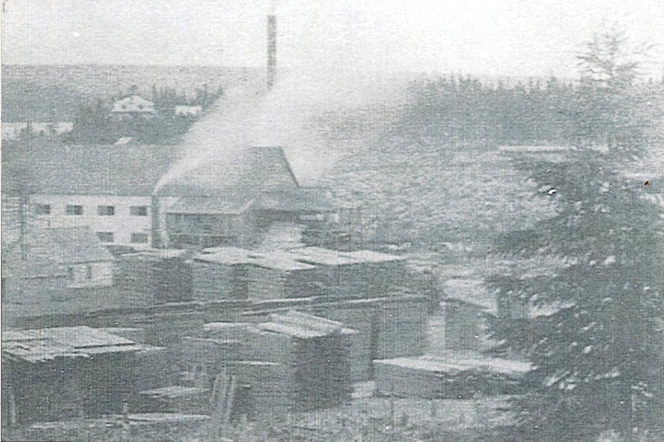 The lumber mill at Botwoodville around the time when the Newfoundland Pine and Pulp Company operated there.