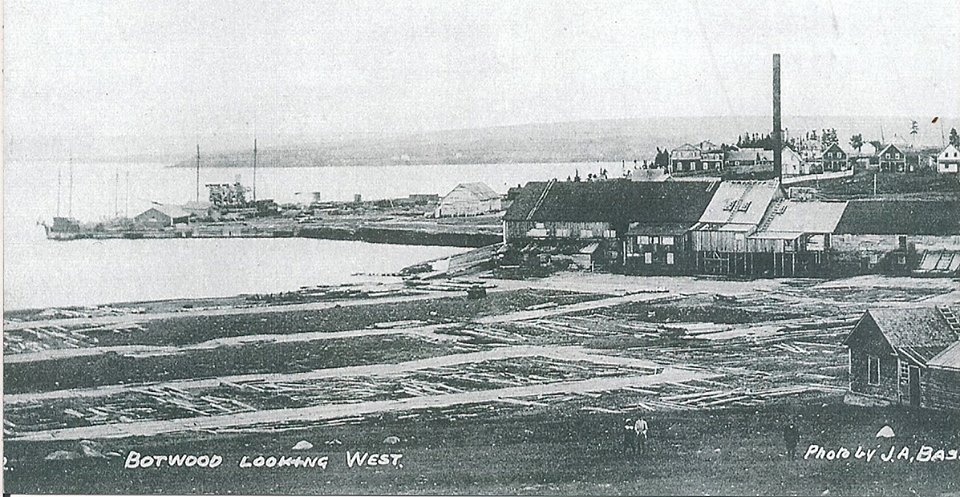 The sawmills at Botwood and Peterview in th elate 1800's were noted as determental to the Exploits salmon because of all of the sawdust that was dumped into the river by them.