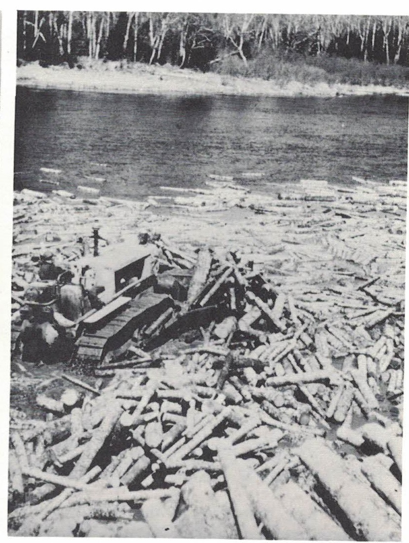 For many years bulldozers were used to push brows of pulpwood into the rivers at the beginning of the drive.