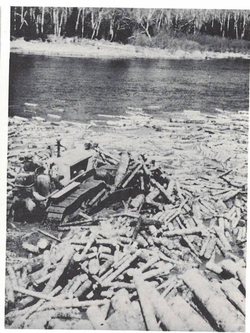 bulldozer pushing wood
