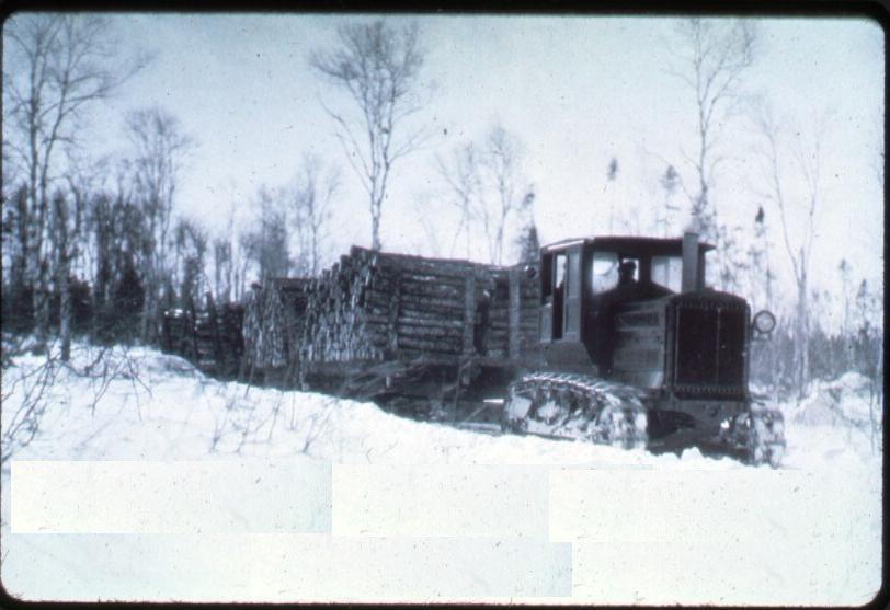 Holt Newfoundland woods 1920's
