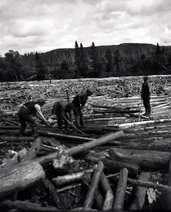 Freeing a log jam. Long wood was driven up until sometime in the 1920's. It was much more prone to jamming and driving required more skill than it did after the switch to shorter wood after the introduction of the bucksaw.