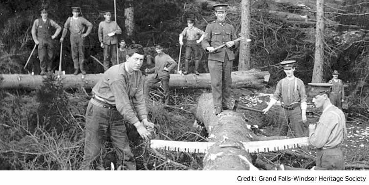 forestry-corps_landing_0.jpg