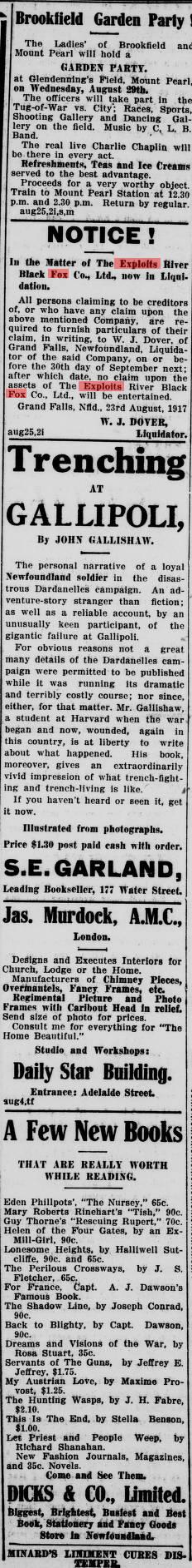 Evening Telegram (St. John's, N.L.), 1917-08-27 Adv. 7 Page 11 Exploits River Balck Fox Co
