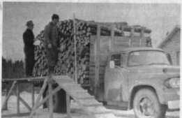 Truck load of Wood AND Co Peters.JPG