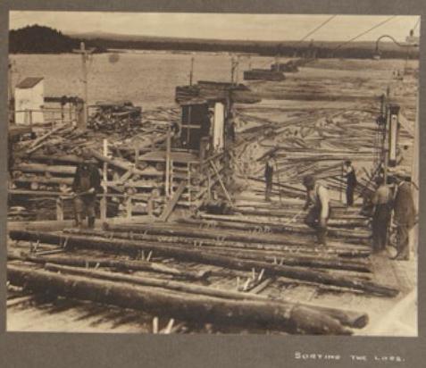 Jackladder 1912 Hayward