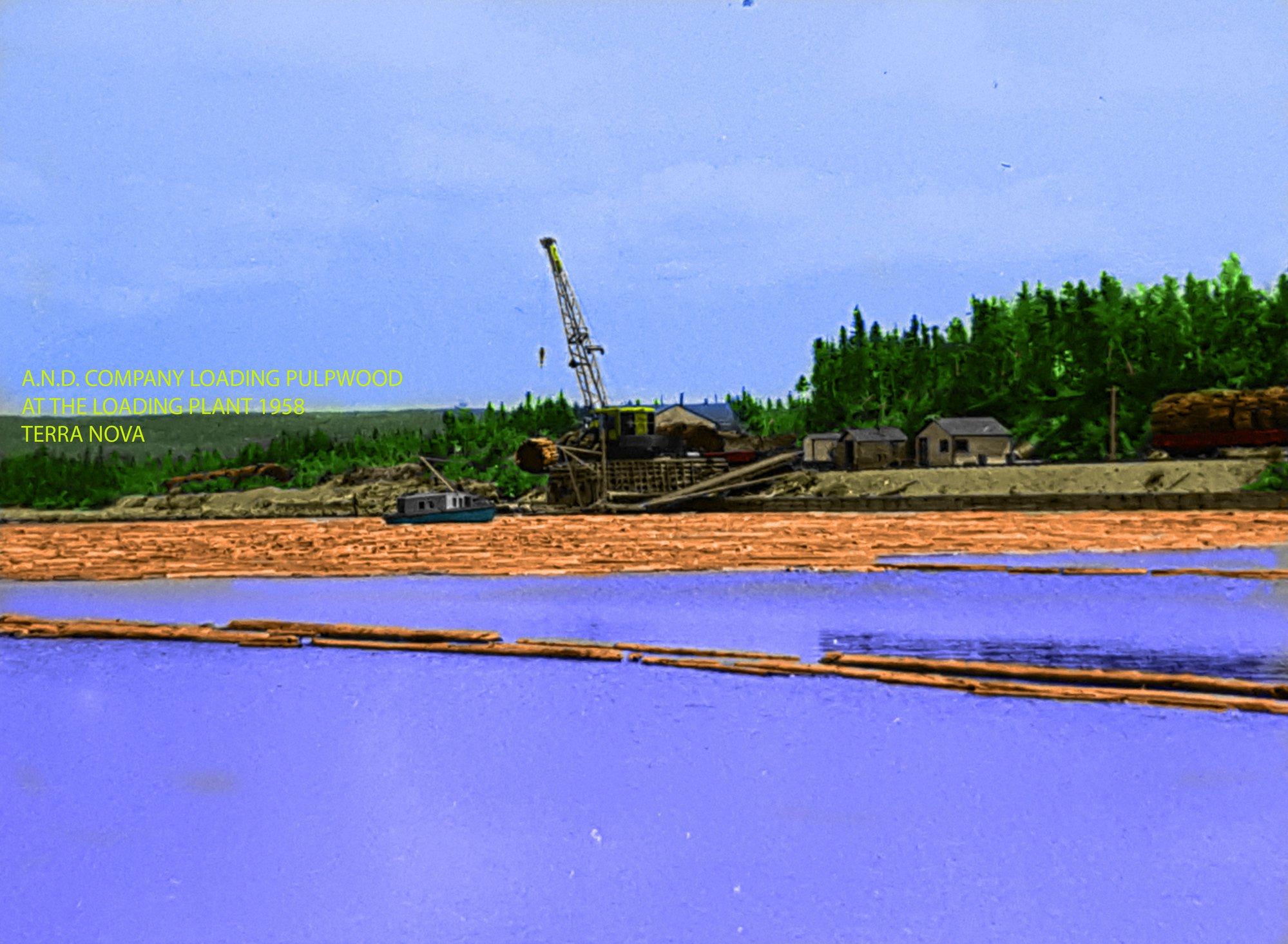 Terra Nova loading Plant Bond Noseworthy.jpg