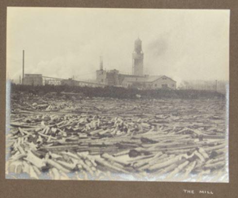 The mill 1912 hayward