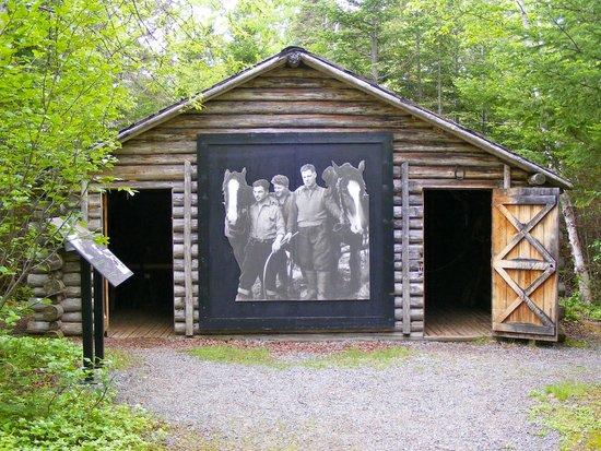Barn logger-s-life-provincial.jpg