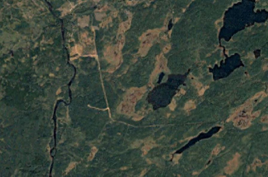 2007 Logging .JPG