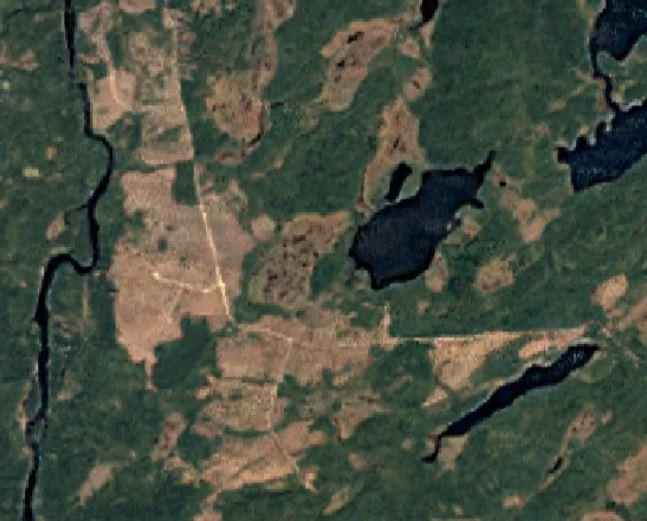 2009 Logging