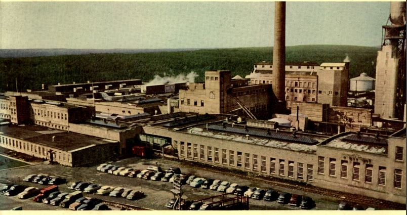 Grand Falls Mill AND Annual report 1955.JPG