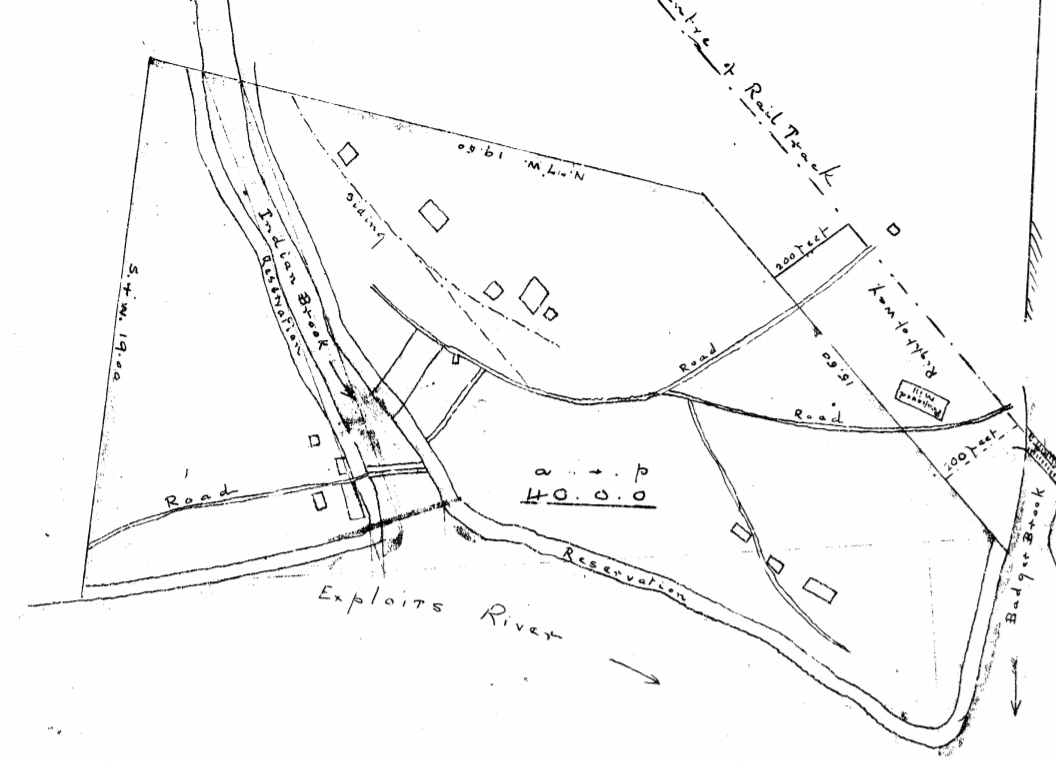 Badger circa 1904 from a map from Crown Lands. Note the buildings and the location of the railway sidings. There is even a bridge over Little Red Indian Brook. All this, a year before any work started at Grand Falls.
